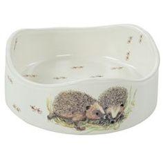 Hedgehog Round Ceramic Decorated Feeding Bowl: Amazon.co.uk: Garden & Outdoors