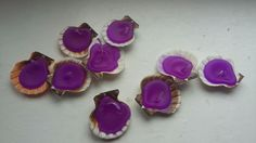 Seashell. Candle. Purple.