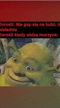 Bts Memes, Funny Memes, Funny Lyrics, Polish Memes, Weekend Humor, I Love Anime, Bungou Stray Dogs, Wtf Funny, Haha