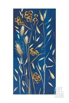 Seed Pods and Grasses, 2014 Giclee Print by Sarah Gillard at Art.com