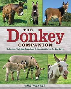 The Donkey Companion : Selecting, Training, Breeding, Enjoying & Caring for Donkeys. I have this book; it is a must have for any donkey owner