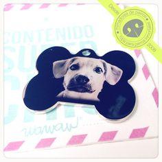Simón es un #RazaÚnicaWawaw, fue adoptado por una familia hermosa y además tiene ya su medalla de identificación. ¿Qué más se puede pedir? #MedallasWawaw / Dog tag picture engraving