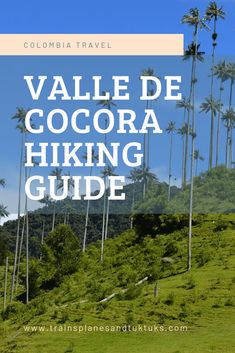 Discover the Cocora Valley hike near Salento, Colombia. Walk among the wax palms in the Valle de Cocora, one of Colombia's most iconic landscapes. Visit Colombia, Colombia Travel, South America Destinations, South America Travel, Travel Guides, Travel Tips, Ecuador, Hiking Tips, Best Hikes