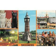 Colourmaster Postcard Skegness Amusements Old Clock Tower Illuminations Beach Listing in the Lincolnshire,England,Topographical,Postcards,Collectables Category on eBid United Kingdom Lincolnshire England, Beach List, Old Clocks, Holiday Places, Short Break, Vintage Postcards, Childhood Memories, United Kingdom, Catering
