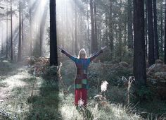 Dipton Wood standing