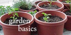 University of Idaho, Landscapes and Gardens website. Link to Garden Basics.
