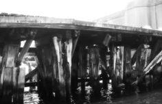 bridge piles