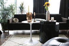 House Tour: Linda Derschang's Seattle Condo   Apartment Therapy