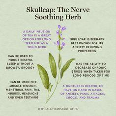 Healing Herbs, Medicinal Plants, Natural Healing, Magic Herbs, Herbal Magic, Natural Health Remedies, Herbal Remedies, Holistic Remedies, Natural Medicine