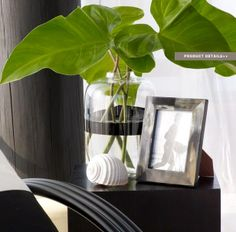 Black and white: glass, deep gray-brown, and green. All low chroma except the plant matter. Image originally from Ralph Lauren and pinned by Maria Killam.