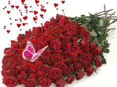 Roses .
