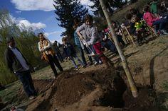 Tot i que aquesta iniciativa té més de 100 anys, a Viladrau se celebra des de fa 10 anys de forma educativa. El cap de setmana més proper al dia 23 de març (aquest any ha coincidit el diumenge amb aquesta data).