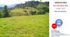 Venta de Finca en Guamal Meta 120 hectáreas, con una casa construida de 200m2, pastos excelentes para ganado, finca agro- industrial. venta a puerta cerrada, con herraminetas, No incluye Ganado, Pais - Colombia