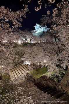 Tsuyama Castle, Okayama, Japan | Norio Nakashima 鶴山公園 津山城跡 Shimane, Japanese Castle, Asian Garden, Okayama, Asian Love, Japan Photo, A Whole New World, Japan Travel, Vacation Trips