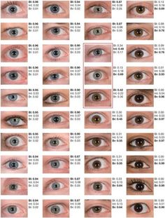 Image result for chart of human hair and eye color