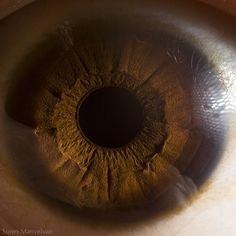 'Your Beautiful Eyes' is a fascinating photo series by Armenian photographer Suren Manvelyan. Using macro photography, Suren captures extreme close-up Eye Close Up, Extreme Close Up, Close Up Pictures, Cool Pictures, Cool Photos, Photo Macro, Iris Eye, Fotografia Macro, Human Eye