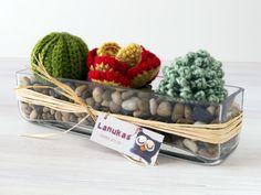 Lanukas: Jardinera de suculentas para Elena