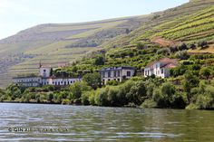 Quintas along the river, Douro Valley, Portugal Douro Valley, Portugal, Vineyard, River, Outdoor, Porto, Outdoors, Rivers, Vineyard Vines