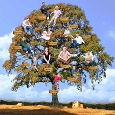 The Family Tree Portrait ~ A wonderful way to create something that will be a really unique keepsake gift