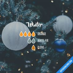 Winter - Essential Oil Diffuser Blend