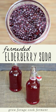 After you forage for elderberries, make this naturally fermented elderberry soda with ginger and honey. Make it with wild yeast or with a ginger bug. Ginger Bug, Ginger And Honey, Elderberry Recipes, Elderberry Syrup, Fermentation Recipes, Canning Recipes, Yummy Drinks, Healthy Drinks, Cough Remedies For Adults