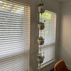 Window Shelves, Hanging Shelves, Diy Hanging, Hanging Wall Art, Display Shelves, Hanging Plants, Indoor Plant Shelves, Big Indoor Plants, Indoor Rugs