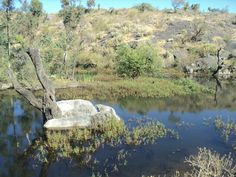 Mt Abu Mount Abu, Amazing Pics, River, Outdoor, Outdoors, Outdoor Games, Outdoor Living, Rivers
