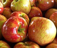 Chestnut, Celery Root & Apple Soup.   #Applesoup #CeleryRootsoup #soup #WhiskCarolina