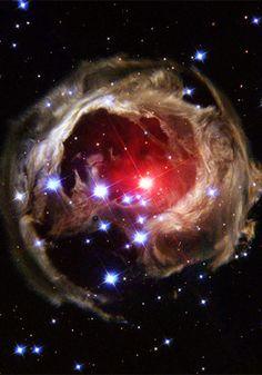 宇宙 - 写真 - 恒星 - 赤色超巨星