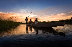 Xigera Camp is a beautiful tented camp in a remote section of the Moremi Game Reserve in the Okavango Delta, in Botswana. Underwater Photography, Nature Photography, Okavango Delta, Adventure Activities, Game Reserve, Wildlife Nature, Travel Companies, African Safari, Travel Planner