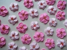Made to order Royal icing cherry blossoms -- Edible cake decorations cupcake toppers pieces) Royal Icing Flowers, Fondant Flowers, Sugar Flowers, Cherry Blossom Cake, Cherry Blossom Wedding, Cherry Blossoms, Edible Cake Decorations, Royal Icing Decorations, Buttercream Icing