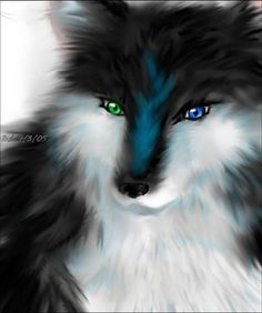 Heterochromia Wolf... This is just awesome. I love the art and shading! And those eyes....