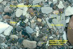 Find the Meteorite