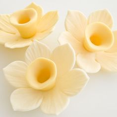 This is a tutorial for my version of an easy to make gum paste daffodil. It only require 1 cutter and some few basic tools to make. I have decided not to make a frilly trumpet for my version, but it is possible to do so, if you like. It looks good when the daffodil…   [read more...]