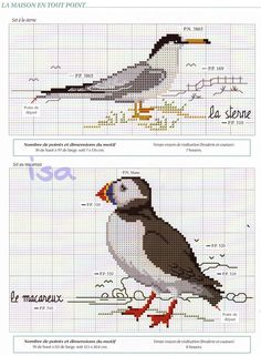 sea birds placemats 2/4