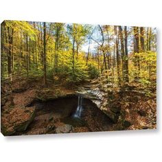 Cody York Blue Hen Falls Gallery-Wrapped Canvas, Size: 24 x 36, Brown