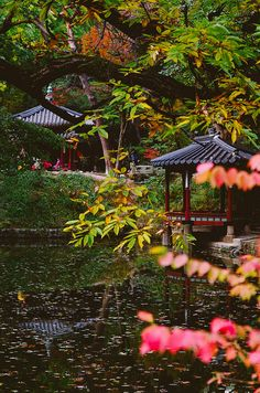 Changdeokgung(Korean Palace) in Autumn by Juni Lee | junibaum