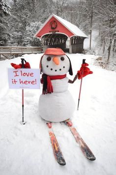New Hampshire Christmas Snowman, cross country skiing! Snow Much Fun, I Love Snow, I Love Winter, Winter Fun, Winter Time, Build A Snowman, Snowman Crafts, Snow Scenes, Winter Scenes