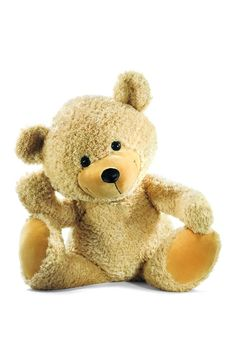Aww cute little bear