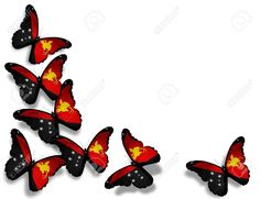 Papua New Guinea Flag Butterflies, Isolated On White Background ...