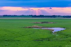 Fotografia Sunset in the Pampa de Bob Machado na 500px