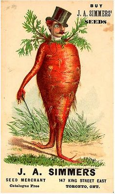 Bizarre Vintage Ads Carrot Man - Not sure the seeds are for growing carrots. Vintage Printable, Vintage Labels, Vintage Ephemera, Vintage Prints, Vintage Posters, Carrot Man, Flowers Illustration, Seed Illustration, Vegetable Illustration