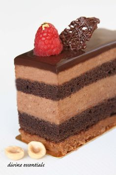 Hazelnut Feuilletine. Chocolate Sponge. Milk Chocolate Mousse. Dark Chocolate Ganache. Raspberry.    Don't you just love cakes with praline...