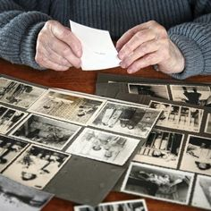 Treelines is one of our five favorite tools for building an online family history scrapbook.