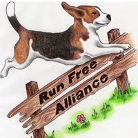 Run Free Alliance: Our aim is to abolish the breeding for and use of Beagles for animal experimentation Petition: https://www.change.org/p/hm-government-uk-abolish-the-breeding-for-use-of-beagles-for-animal-experimentation-in-the-uk HTTPS://WWW.FACEBOOK.COM