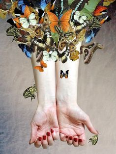 Continuing to include butterflies as 'emblems of hope', Kate's final A Level Photography work 'The Butterfly Project' is a technically superb digital collage – a simple yet striking composition.