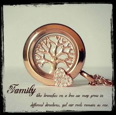 Family is important. Create your very own locket today. southhilldesigns.com/ginacastelli