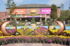 천안연암대학, 제30회 국화전시회 및 제24회 졸업작품전시회 개최