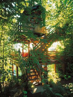 Kids of all ages will find this shaded multilevel treehouse a getaway they won't want to leave.