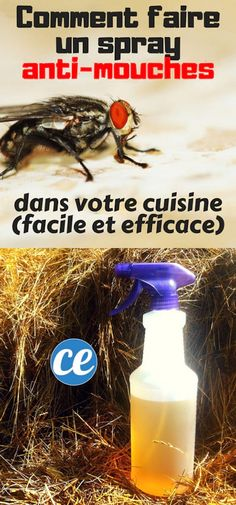 Comment Fabriquer un Spra - Fr Decora la Maison Making Space, House Front Design, Best Investments, Alternative Energy, Helpful Hints, How Are You Feeling, Good Things, How To Plan, Blog